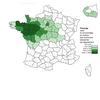 Cartographie française des toponymes  évoquant le plessage et le « Cormier »