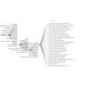 Visualisation des données SKOS du code ROME de Pôle Emploi