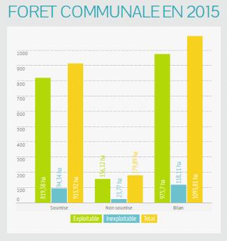 Brocas : Gestion de la forêt communale en 2015