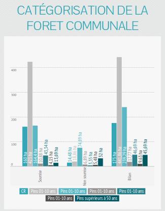 Brocas : catégorisation de la forêt communale