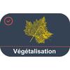 Mesurer le niveau de végétalisation de votre commune