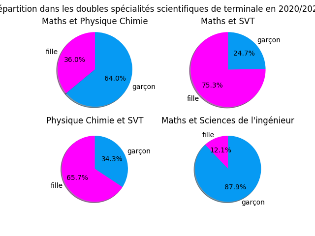 Taux de féminisation des doublettes scientifiques