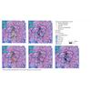Présence des services de santé de proximité en parallèle à l'indice de vieillissement : comparaison entre Riom Limagne Volcans et Clermont-Auvergne-Métropole