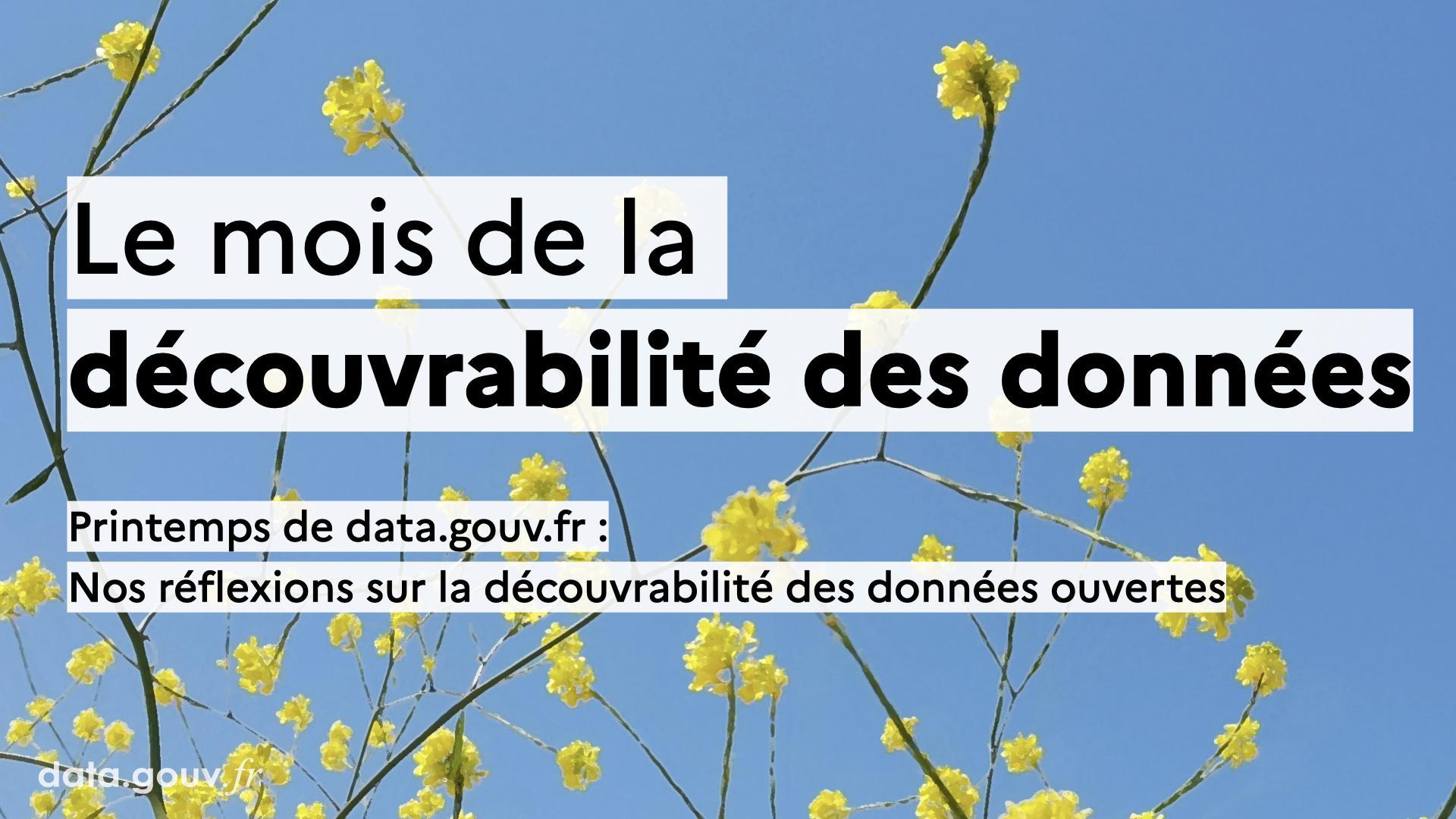 Nos réflexions sur la découvrabilité des données ouvertes