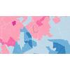 Municipales 2014 à Toulouse : carte vectorielle