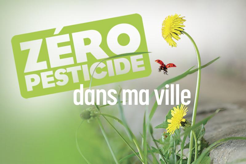 """Objectif """"zéro pesticide"""" en Île-de-France : Les communes franciliennes prennent de l'avance"""