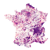 Taux d'incidence (<65ans) animation