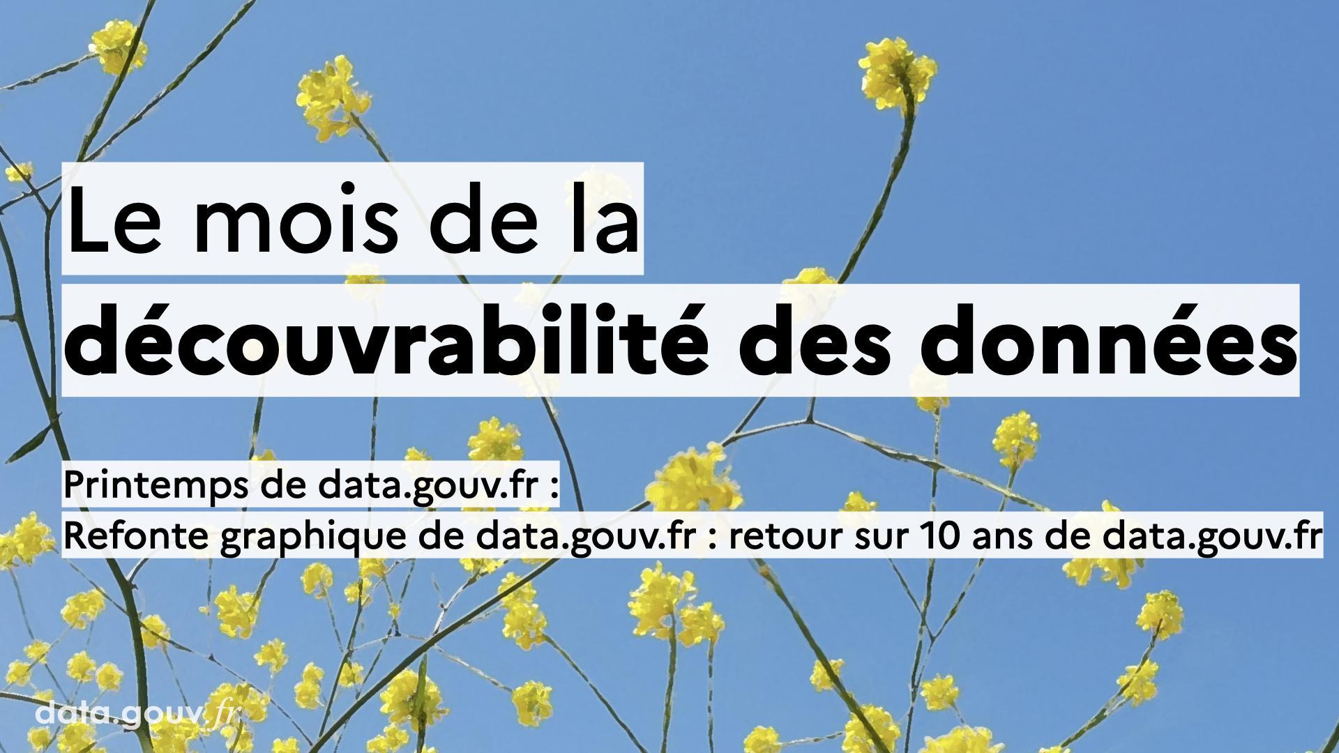 Refonte graphique de data.gouv.fr : retour sur 10 ans de data.gouv.fr